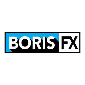 Boris - the Future Store