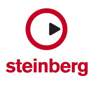 Steinberg - the Future Store